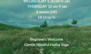 Yoga @ Ballymena North: Wednesday 6.30 pm  (8 Jan) & Thursday 10 am (9 Jan)